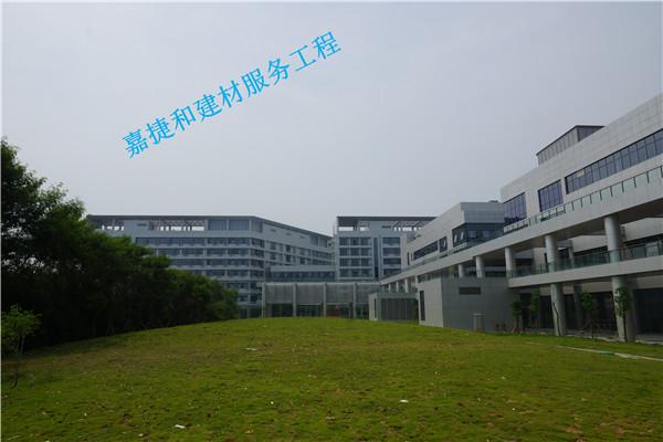 香港大学深圳医院—滨海医院